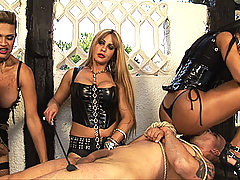 Shemales spank and punish a submissive