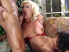 Guy chick n tranny have blowing fun